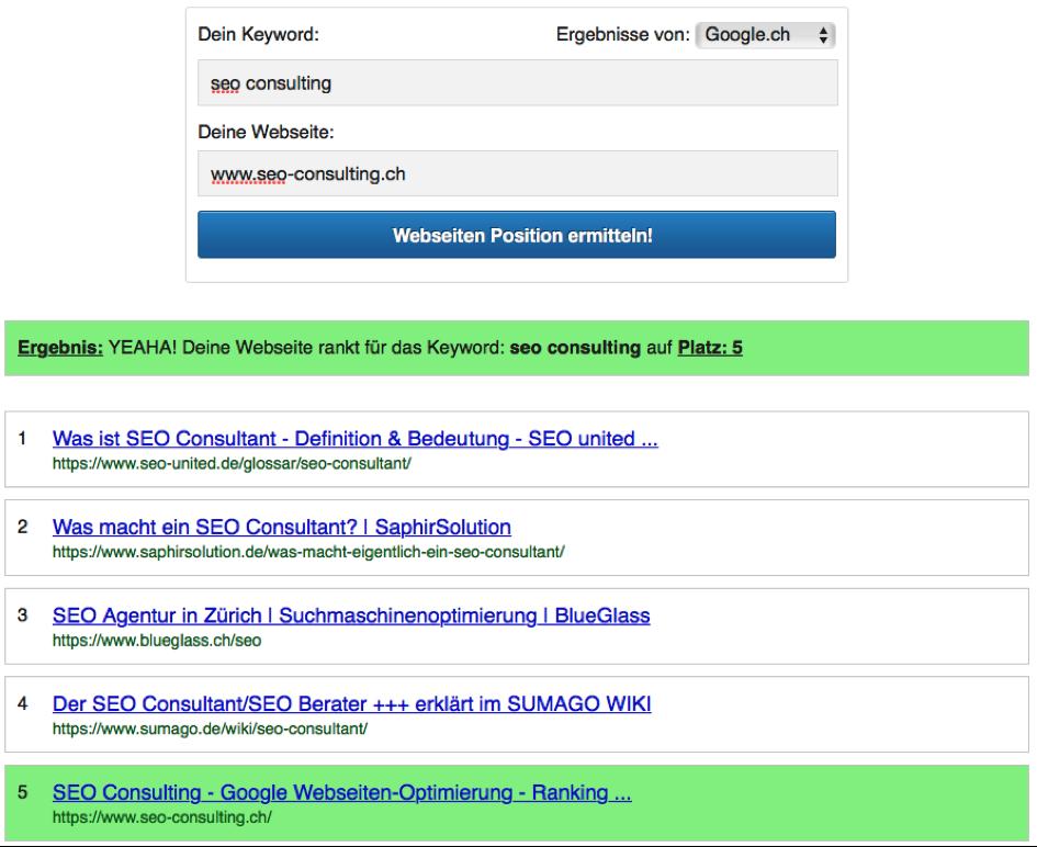 Google Ranking Check - SEO Consulting